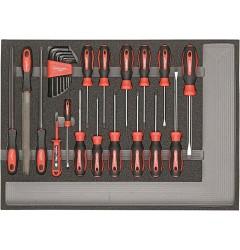 Carolus (Gedore) 2250.903 Комплект отверток, напильников в модуле из пенистого материала, 25 предметов
